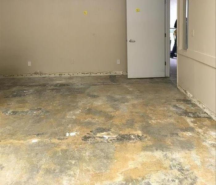 LOCAL BUSINESS FLOOR DRY DUE TO SERVPRO ACTING QUICK