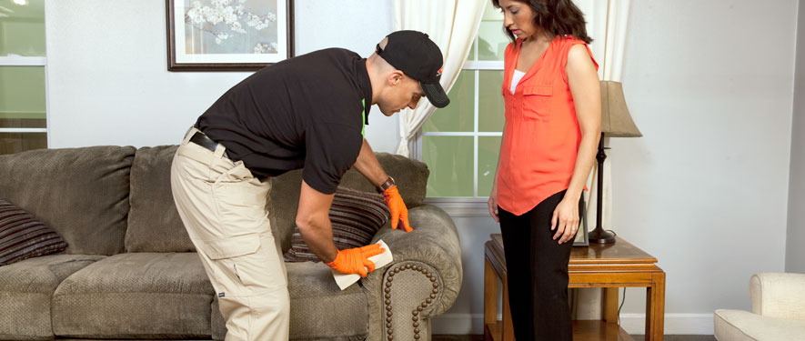 Lompoc, CA carpet upholstery cleaning